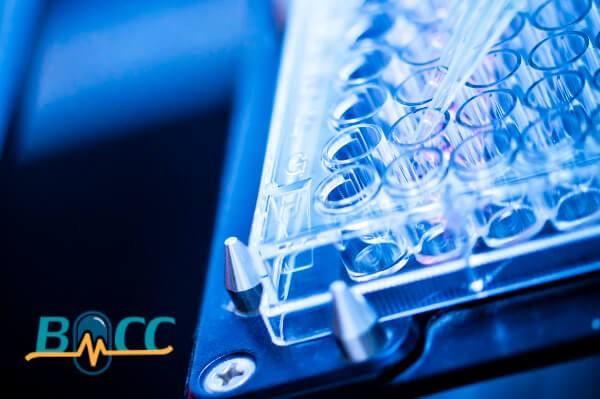 網頁設計-網站設計 - MDCC醫材商品化中心
