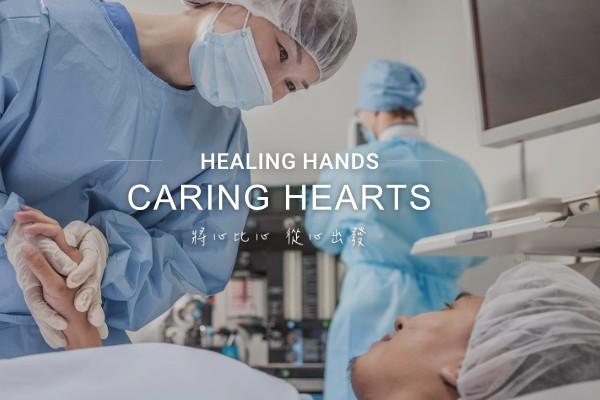 網頁設計-網站設計 - 台灣心臟外科研究發展協會