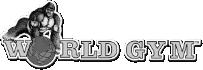 世界健身事業有限公司